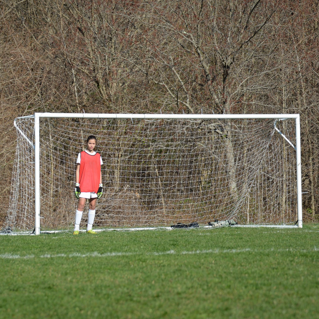"""Lonely Goalie"" stock image"