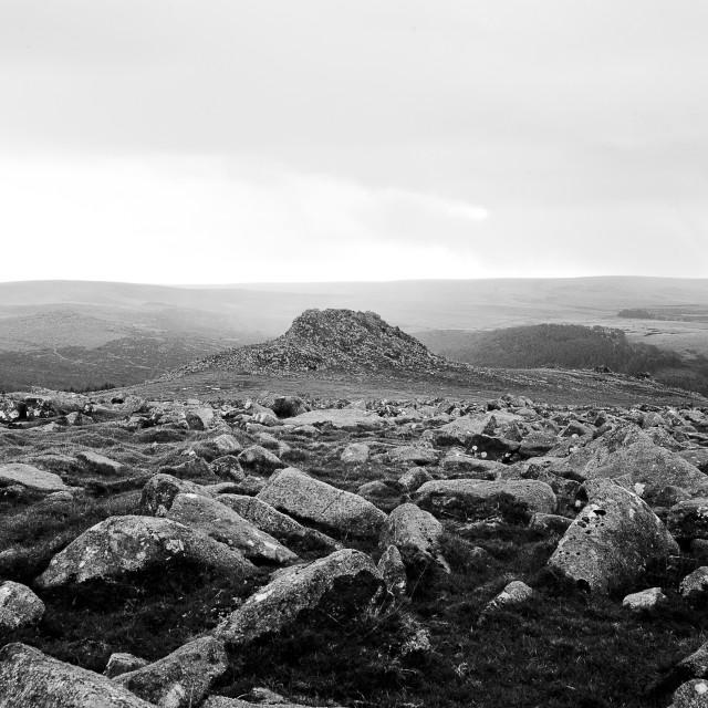 """""""Dartmoor"""" stock image"""