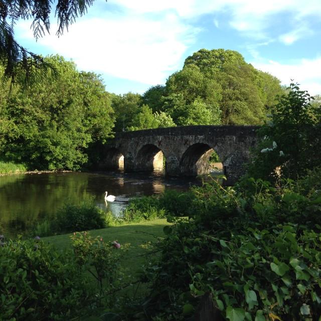 """""""Bridge at Bickleigh, Devon"""" stock image"""