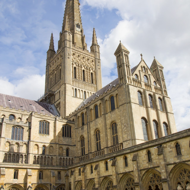 """Norwich Cathedral in England"" stock image"