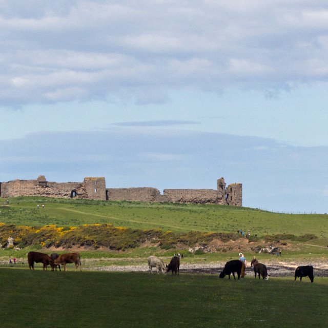 """Dunstanburgh Castle from the south"" stock image"