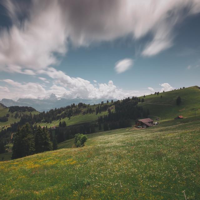 """Mount Rigi"" stock image"
