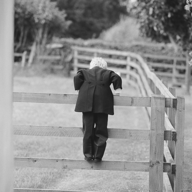 """Little Boy Climbing a fence at a wedding"" stock image"