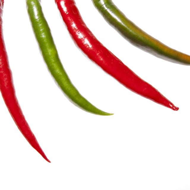 """""""Four peppers fingers"""" stock image"""