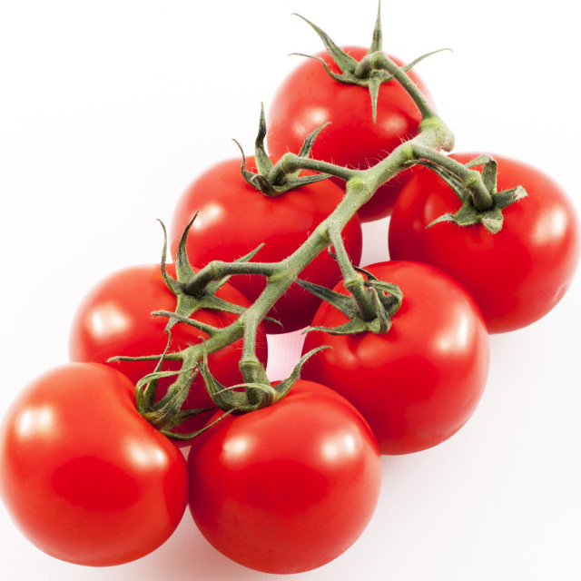 """Ripe tomatoes on the vine"" stock image"