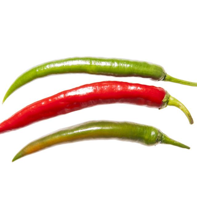 """Three peppers horizontal"" stock image"