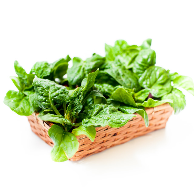 """Bunch of green raw spinach leaves close up differential focus"" stock image"