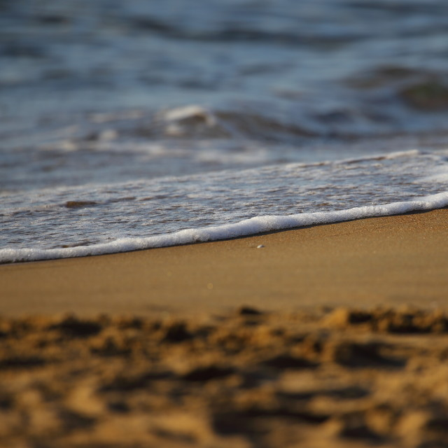 """""""The wave and the shoreline"""" stock image"""