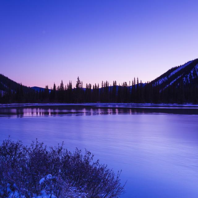 """forgetmenot pond"" stock image"