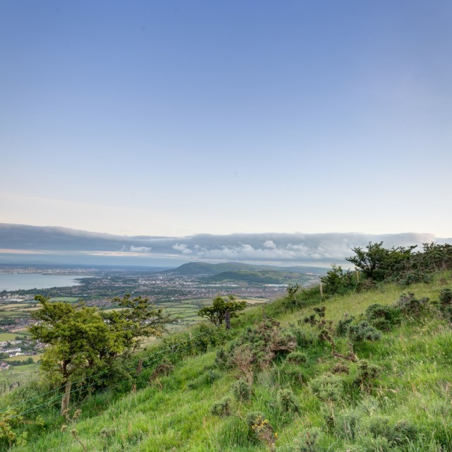 """From Knockagh Hill"" stock image"