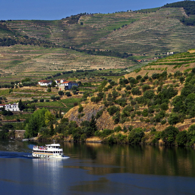 """Douro Valley and River"" stock image"