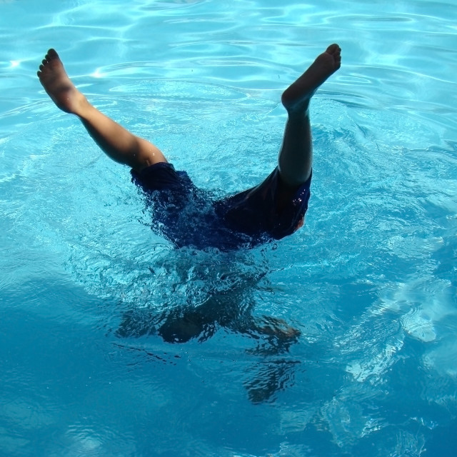 """""""Diving in the Pool"""" stock image"""