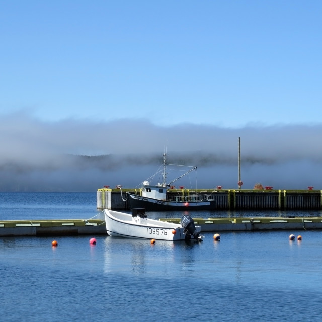 """""""Fog rolling into the harbour"""" stock image"""