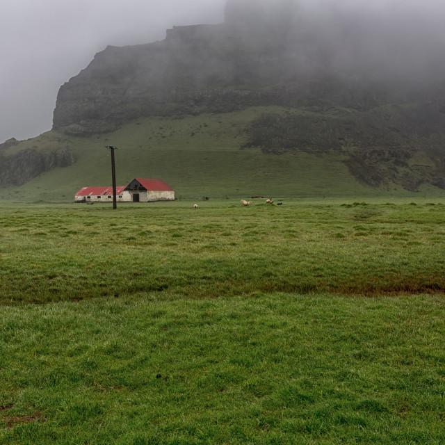 """little farm in the fog"" stock image"