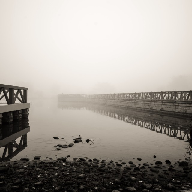 """The lake in fog"" stock image"