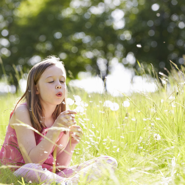 """Girl Sitting In Summer Field Blowing Dandelion Plant"" stock image"