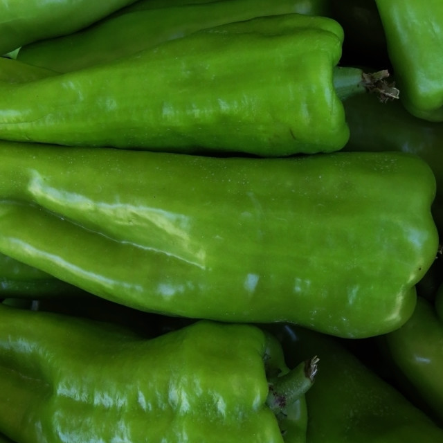 """""""Fresh Picked Hot Green Peppers"""" stock image"""