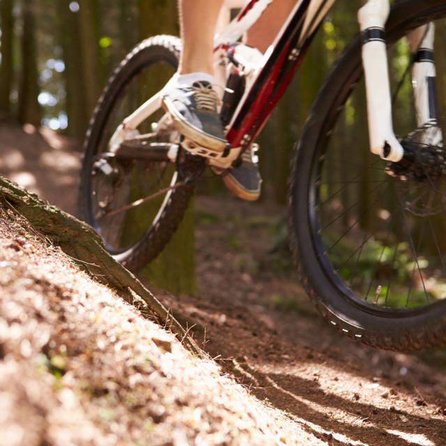"""Close Up Of Man Riding Mountain Bike Through Woods"" stock image"