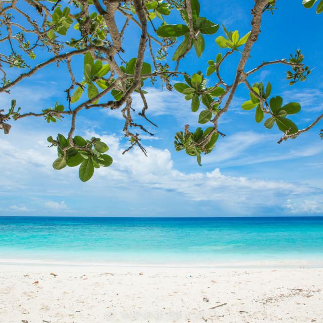 """summer on the beach"" stock image"