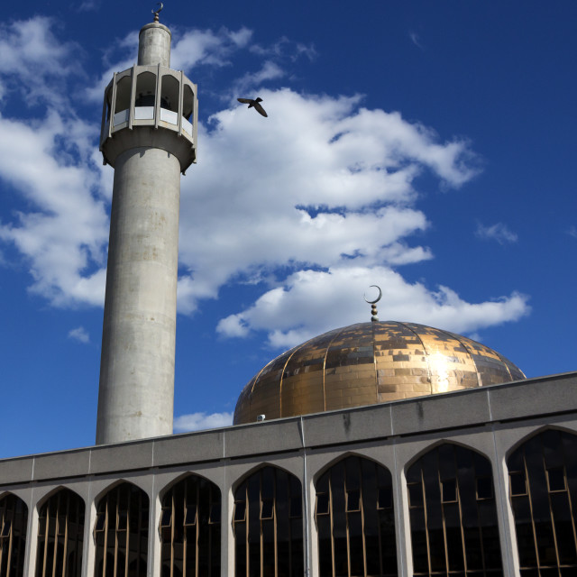 """""""London Central Mosque"""" stock image"""