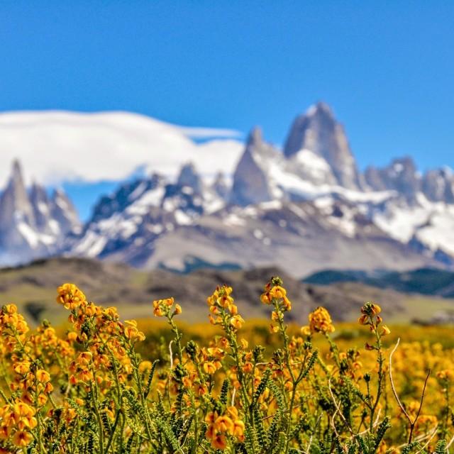 """El Chalten, Patagonia"" stock image"