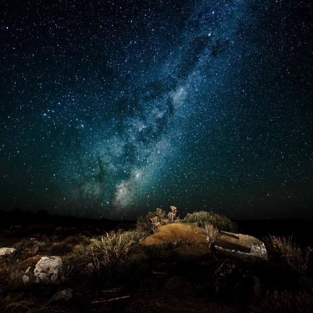 """Starry winters night"" stock image"