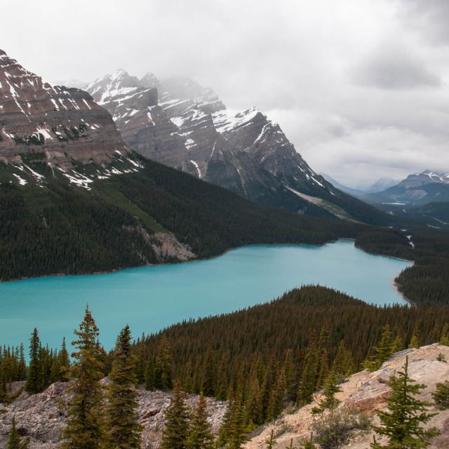 """Peyto Lake Canada"" stock image"