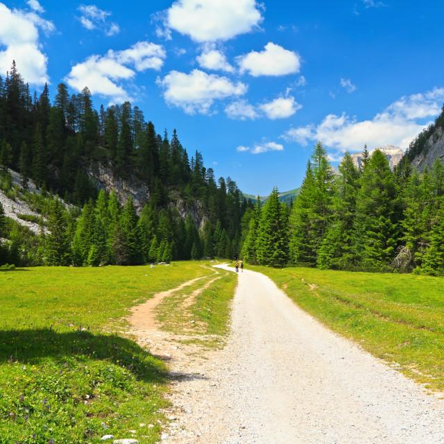 """Dolomiti - Contrin Valley"" stock image"