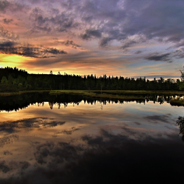 """Cottage fen- Bohemian Forest"" stock image"