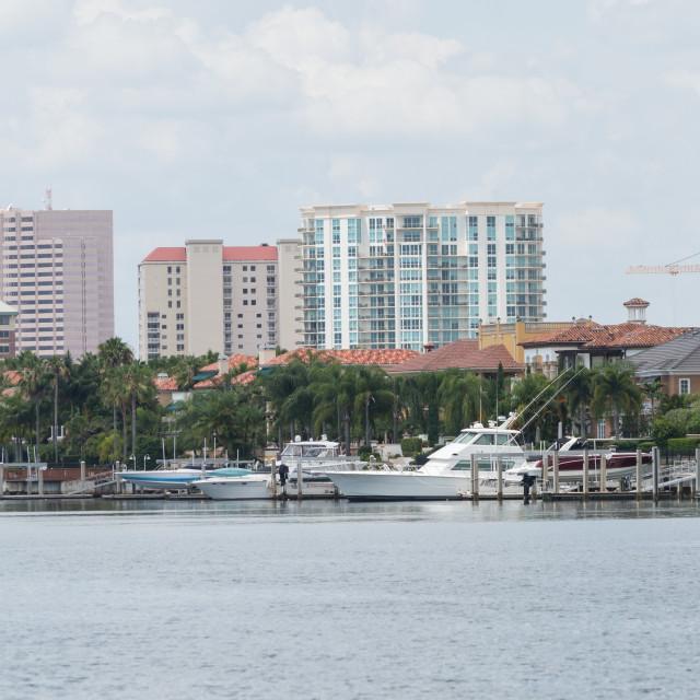 """TampaBay Florida"" stock image"