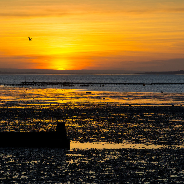 """Sunset at Whitstable"" stock image"