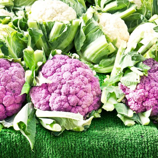 """Purple cauliflower"" stock image"
