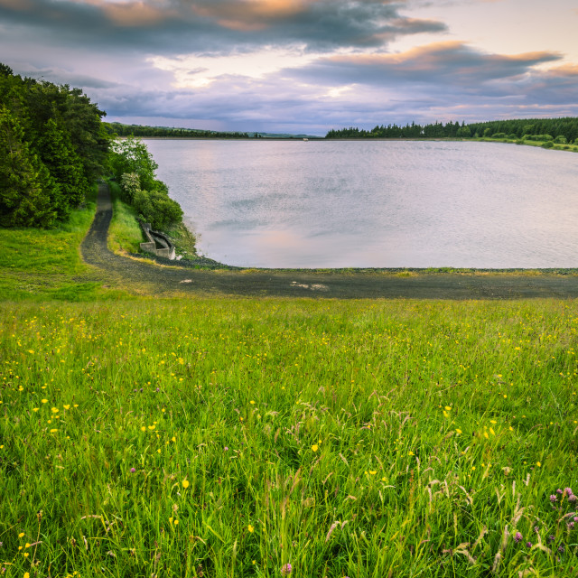 """""""Woodburn Reservoir (Middle-South)"""" stock image"""