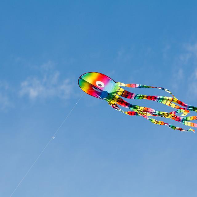 """""""Kite"""" stock image"""