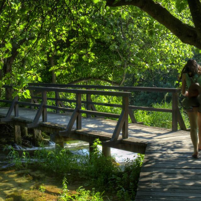 """Walkway, Krka National Park"" stock image"