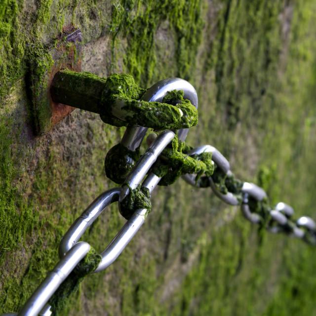 """Metallic Chain on stone wall"" stock image"