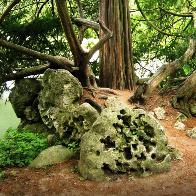 """The Stone in Lednice ´s park"" stock image"