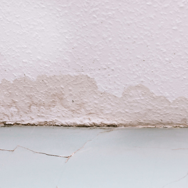 """""""Ceiling damp"""" stock image"""