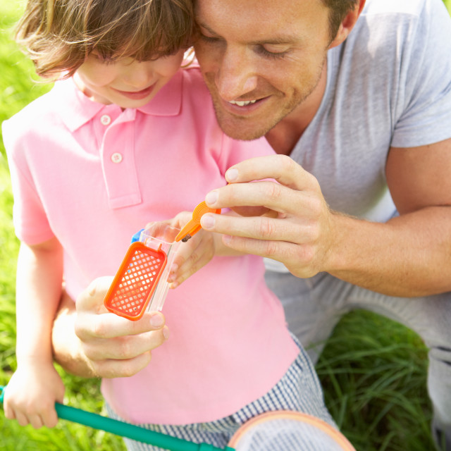 """""""Father And Son In Field With Net And Bug Catcher"""" stock image"""