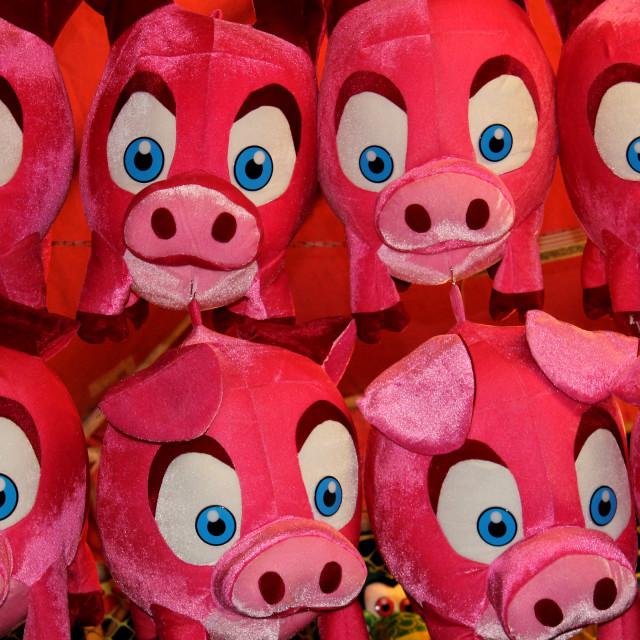 """""""Piggies"""" stock image"""