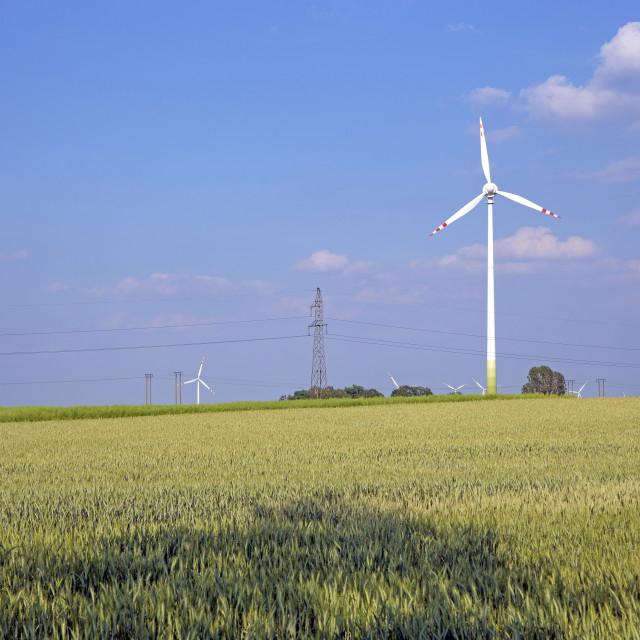 """Windpower"" stock image"
