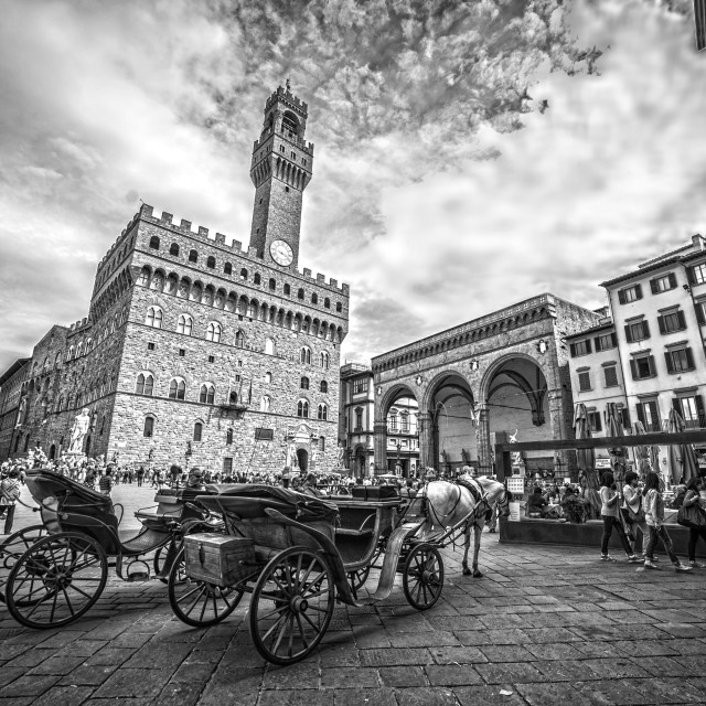 """Old Palace, Florence"" stock image"