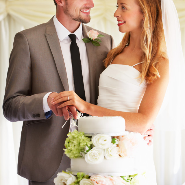 """""""Bride And Groom Cutting Wedding Cake At Reception"""" stock image"""