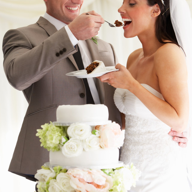 """Groom Feeding Bride With Wedding Cake At Reception"" stock image"