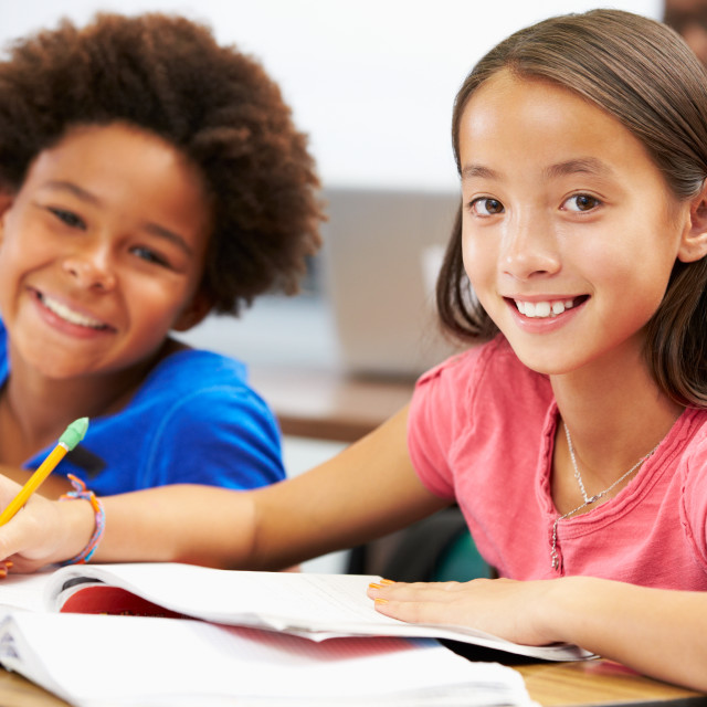"""""""Pupils Studying At Desks In Classroom"""" stock image"""