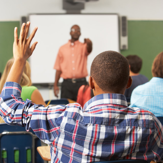 """""""Male Pupil Raising Hand In Class"""" stock image"""