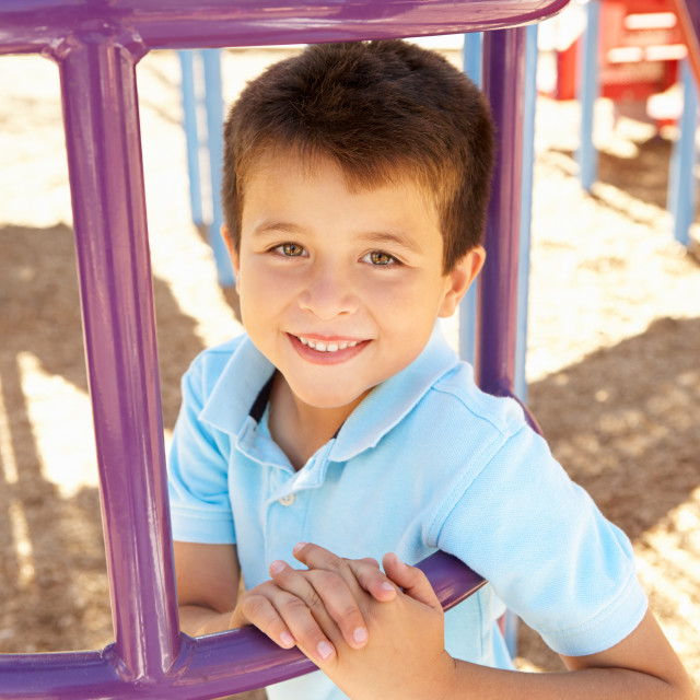"""""""Boy On Climbing Frame In Park"""" stock image"""