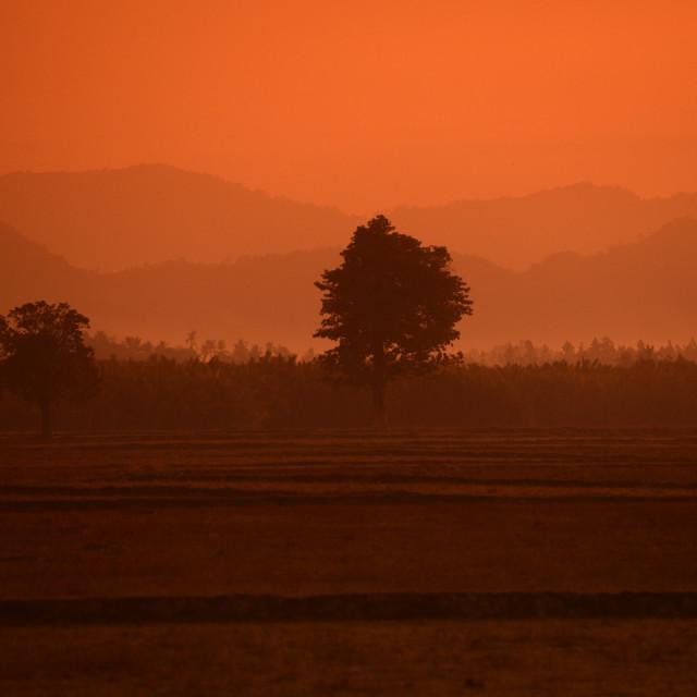 """""""ASIA MYANMAR BURMA MYEIK LANDSCAPE"""" stock image"""