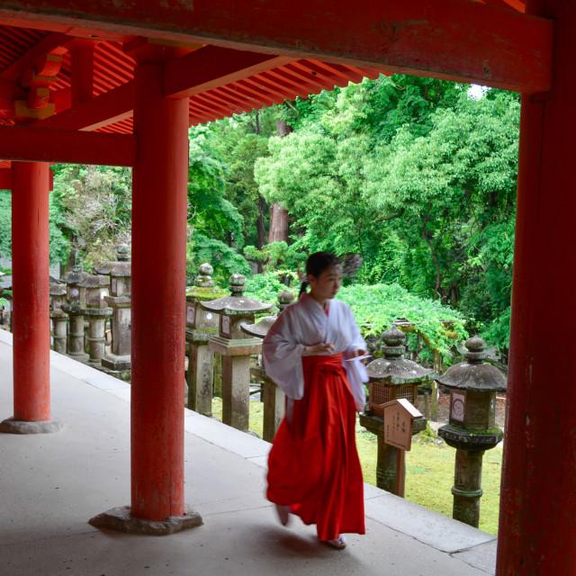 """Woman walking through a temple, Nara, Japan"" stock image"