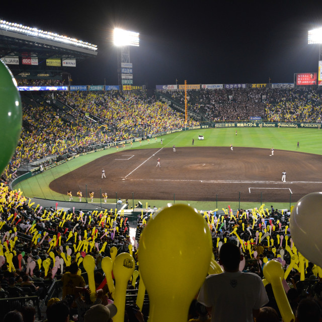 """Baseball at Koshien Stadium, Osaka"" stock image"